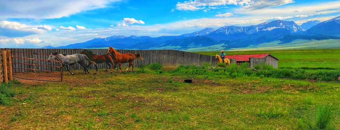 >Properties for Sale in Forbes Park, Westcliffe & Gardner , Colorado