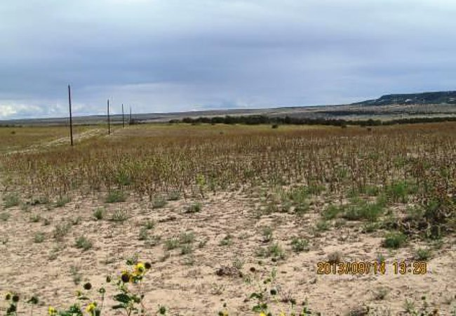 Vacant Land for sale in Rye, Colorado