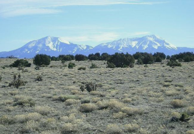 Lot/Acreage for sale in Walsenburg, Colorado