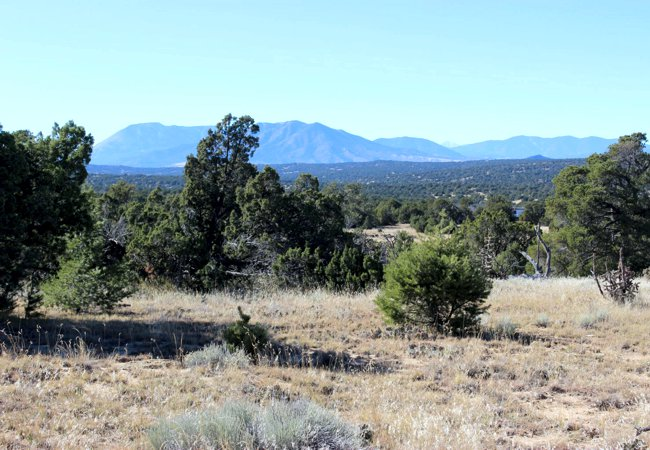 Vacant Land for sale in Walsenburg, Colorado