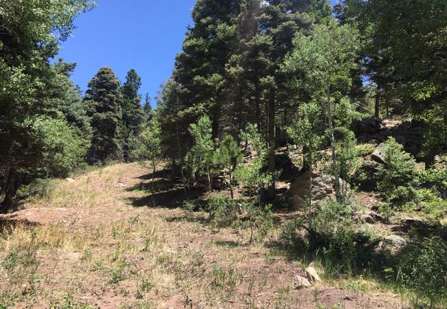 Vacant Land for sale in Cuchara, Colorado
