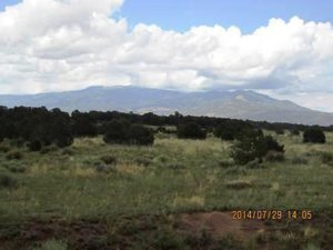 Colorado Land & Grazing Lot for Sale in Gardner