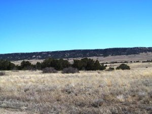 Ghost River Ranch lot for sale near Rye