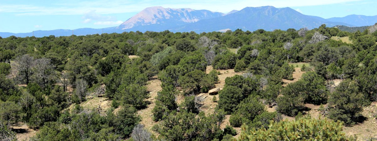 Rio Cucharas Ranch lot for sale near Walsenburg