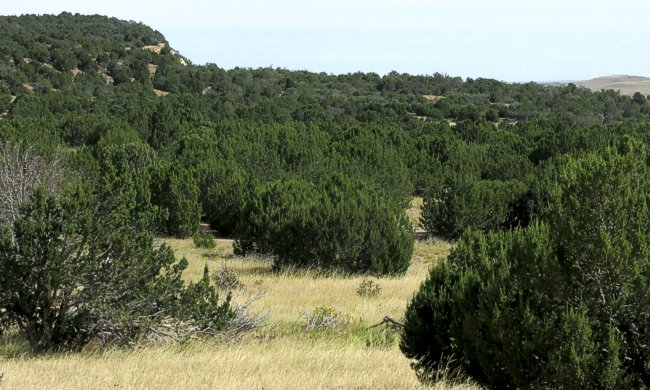 Silver Spurs Ranch lot for sale near Walsenburg