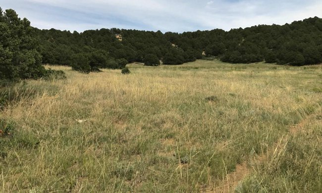 County Road 440 lot for sale near La Veta