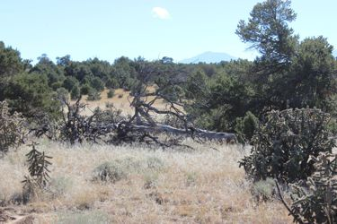Lot for sale at County Road 521.2, Walsenburg