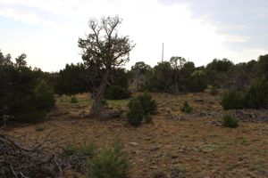 Rio Cucharas lot for sale in Walsenburg