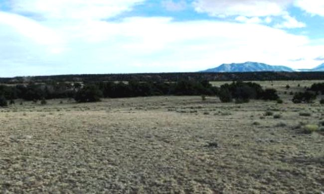 Colorado Land and Grazing Lot for Sale in Gardner