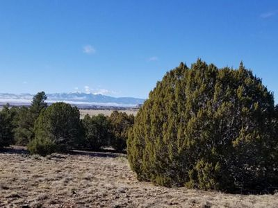 Freight Train Way Lot for Sale in Rye, Colorado
