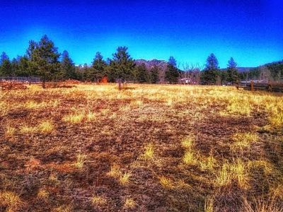 Stonewall Meadows Lot for Sale in Stonewall, Colorado