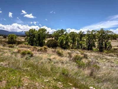40 Acres for sale in Gardner, CO