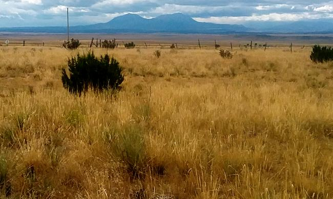 Turkey Ridge Ranch Lot for Sale in Walsenburg