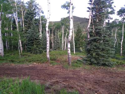 Aspen Circle lot for sale in Cuchara
