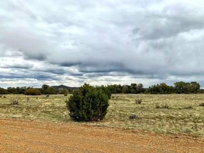 Home for Sale at 2.5 acre getaway in Rio Cucharas Sub in Walsenburg, CO