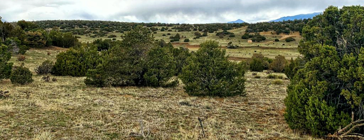 2.5 acre getaway in Rio Cucharas Sub in Walsenburg, CO