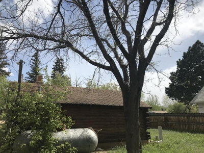 Two town lots on a quiet street in the historic town of La Veta