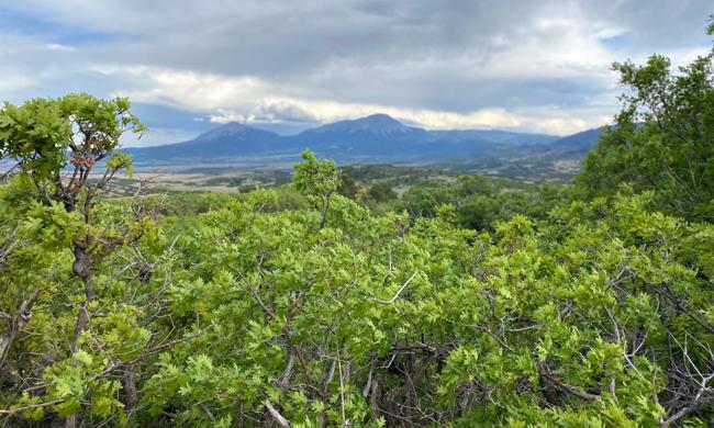 Tres Valles Lot for Sale in La Veta, Colorado