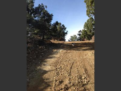 Vacant Lot for Sale in Weston, Colorado