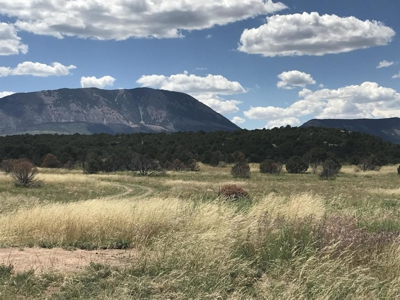 Home for sale Majors Ranch in Walsenburg, Colorado